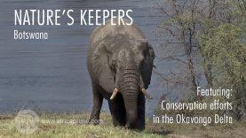 Nature's Keepers Botswana