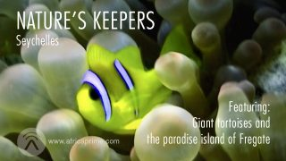 Nature's Keepers Seychelles