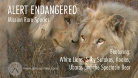 Alert Endangered – Rare Species
