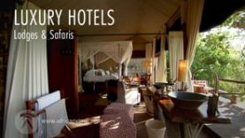 Hotels of Africa, Lodges and Safaris