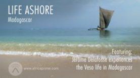 Life Ashore – Madagascar