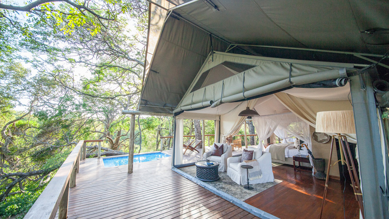 THE INSIDER'S GUIDE TO A GLAMPING SAFARI IN SOUTH AFRICA