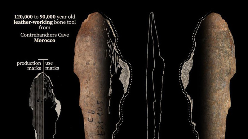 Evidence of Fur and Leather Clothing, Among World's Oldest, Found in Moroccan Cave